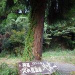 阿蘇 火の鳥温泉 欧風料理宿 ログ山荘 火の鳥 - 店舗の案内看板