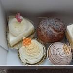 パティスリーノエル - ケーキたち