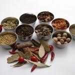 カナピナ - 20種類以上の香辛料使用、