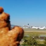 ハマ・ノ・テ labo - チョコケーキ80円 in Itami Airport