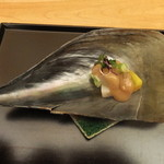 たまさか - 平貝と山菜の梅肉掛け