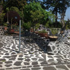 ガーデンカフェドットコム - 料理写真:お庭