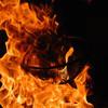 とり夢亭 - 料理写真:迫力の炭火焼…!