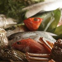 季節折々の旬の魚を提供!