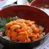 夷知床 - 料理写真:人気の 生うに丼
