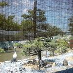 巴屋 - 庭の眺め