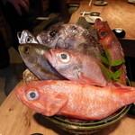 27123112 - まずは料理に使うお魚を選びます