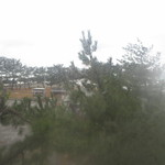 亀島亭 - 2014.01.09大きな窓から見える外の風景