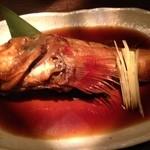 27397811 - 2014/5/某日 本日のメイン~~カサゴの姿煮 ¥2680