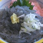 新富鮨 - 生しらす丼