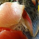 海人市場 - 刺身定食の〆鯖