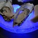 MAIMON - 生牡蠣 厚岸産