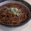 Iidayaken - 料理写真: かけそば~☆