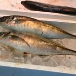 新鮮市場フレッツ 魚屋シュン -  あじフェア(2014.05)
