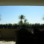 サザンビーチカフェ - 店内で座ると外が見えませんがこれには配慮が・・・