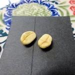 sunday zoo - 自家栽培のコーヒー豆