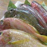 沖縄県産魚
