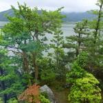 うなぎ 淡水 - 窓からの景色