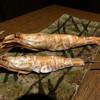 蘂 - 料理写真:がさ海老の塩焼き¥380