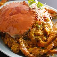 タイで人気、亜熱帯のマングローブクラブ蟹が入荷。