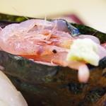 銀太 - 料理写真:旬の生桜海老