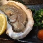 地球屋にんげん亭 - 岩牡蠣 ¥300