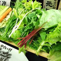 【種類豊富な新鮮野菜】