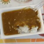 函館カレー エクスプレス - 試食の廬火野カレーに辛味調味料としてのガラムマサラを加えて辛口でいただく
