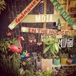 モジャ イン ザ ハウス - MOJA !MOJA!