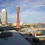 29822815 - 部屋から眺められる神戸タワー
