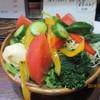 雑魚萬 - 料理写真:14/8野菜サラダ