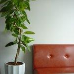 cafe braliva - 内観写真:落ち着いた空間を作ることにこだわったインテリア・音楽