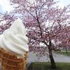 道の駅 しかおい - 料理写真:2014.05_牛乳ソフトクリーム(350円)