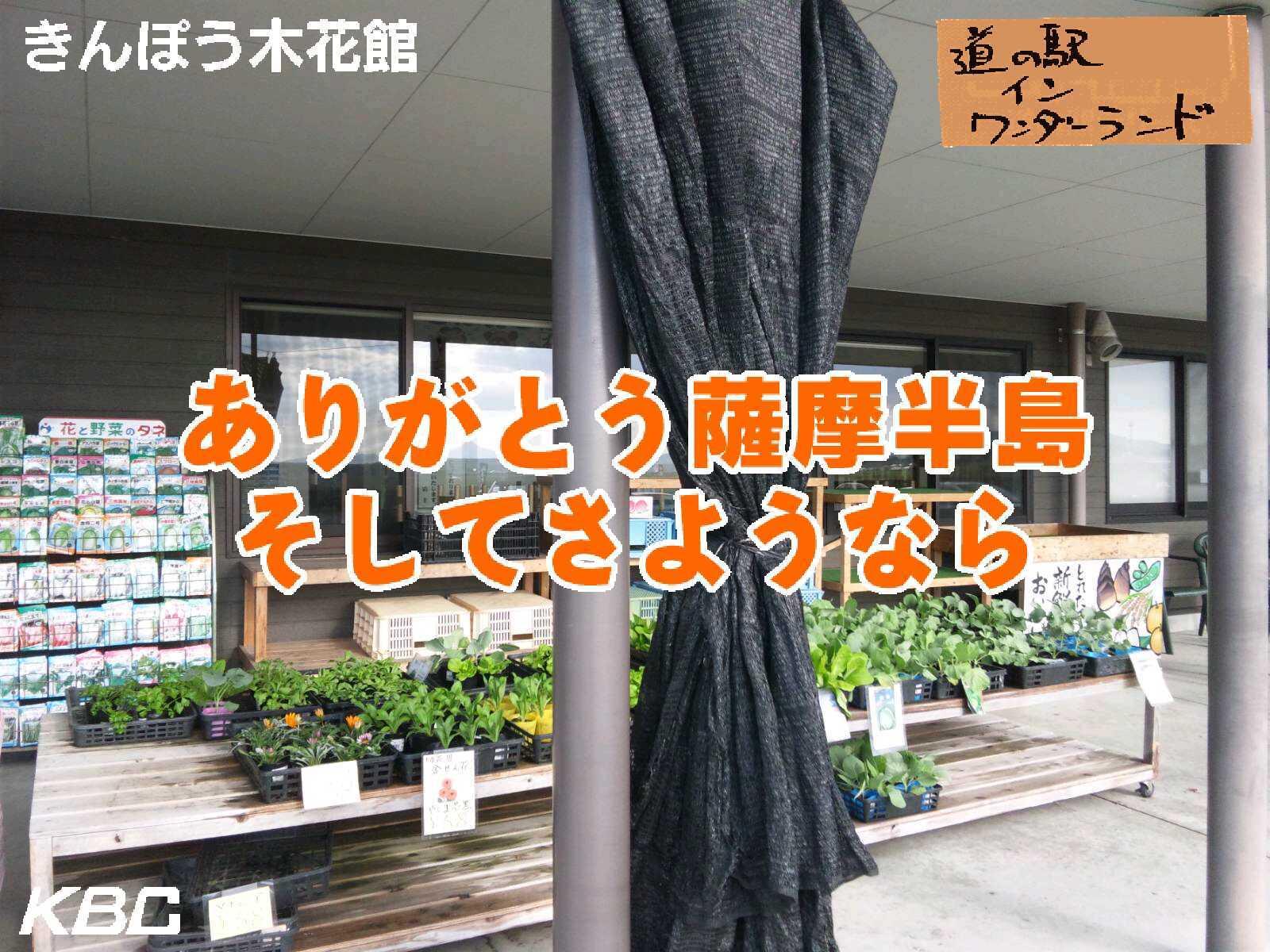 きんぽう木花館