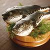 和匠 魚心 - 料理写真: