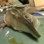 第三春美鮨 - 小肌 32g 投網漁 佐賀県太良大浦       本当、小さいけど甘いですばい。