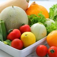 旬の野菜をお楽しみ下さい