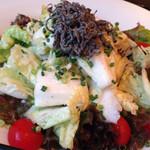 ハナビ - 白菜と塩昆布のサラダ