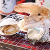 小田原居酒屋湘南大衆横丁 - 料理写真: