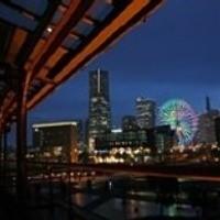 横浜の夜景を楽しみながらお食事を