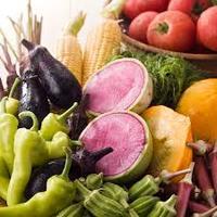 ★産直野菜!朝採れ新鮮で旬な季節野菜★