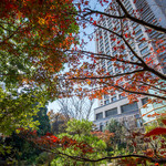 龍天門 - ウェスティン ガーデン側から臨むホテル外観