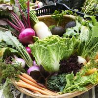 三浦半島の契約農家・青木農園の直送お野菜達♪