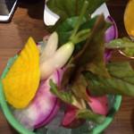 32297044 - 鎌倉野菜のバーニャカウダ小