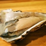 祭寿司 - 生牡蠣(昆布森)