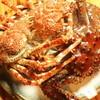 赤い屋台 - 料理写真:カニ(食材