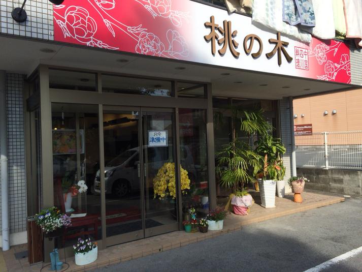 四川料理 桃の木