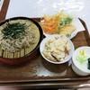 すきふね - 料理写真:『天ぷら付ざるそば』(税込800円)+『まぜご飯』(税込150円)(20141129追加)