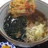 駒 - 料理写真:天ぷらそば