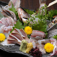 三浦鮮魚漁師盛り